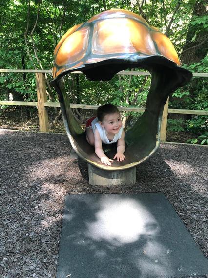 The Children's Zoo!